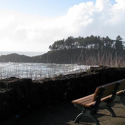 Depoe Bay Whale Park - view