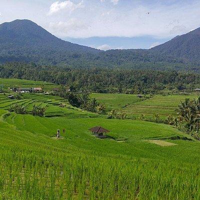 Bali candidasa beach and viewon tour