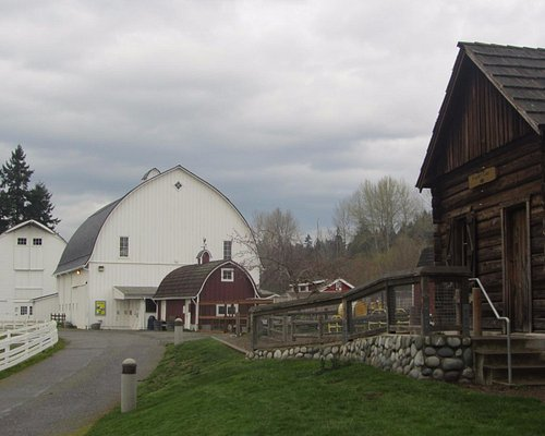 View of the log cabin and various barns