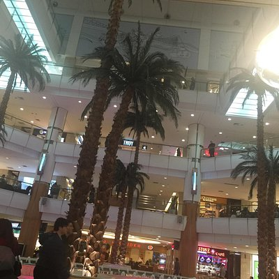 Shopping fountain