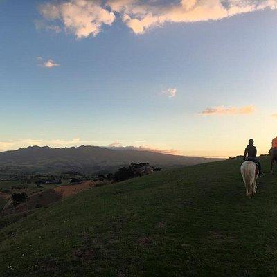 Glowworm Trail Ride