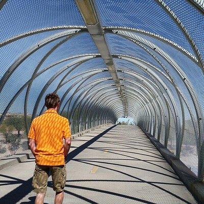 Rattlesnake Bridge