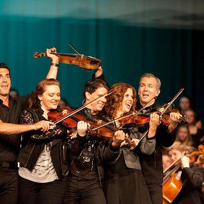 Dutton Violin Lineup