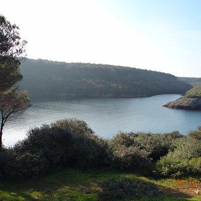 Hamsilos-Sinop