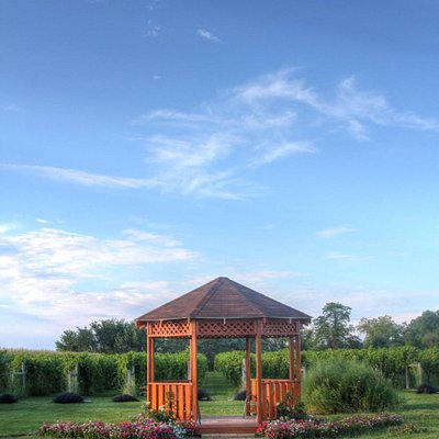 Gazebo located in front of the vineyard.
