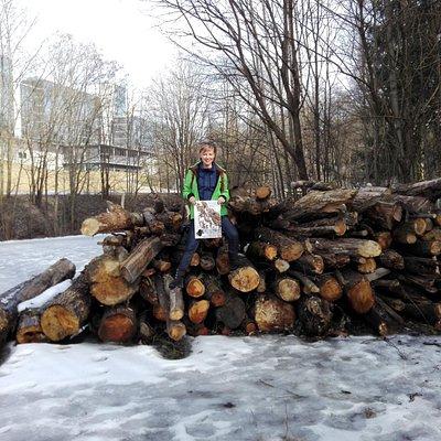 дрова-дровишки