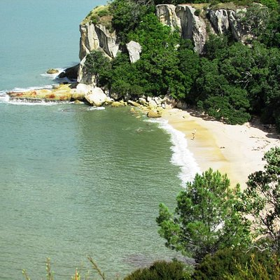 Cook's Beach