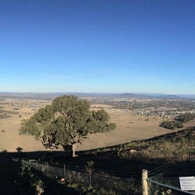 View from One Tree Hill Lookout