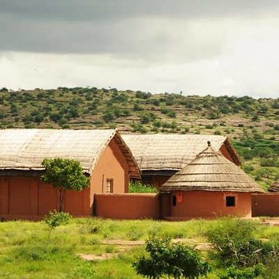 Arna Jharna:The Desert Museum of Rajasthan