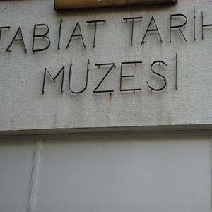 tabiat tarihi müzesi
