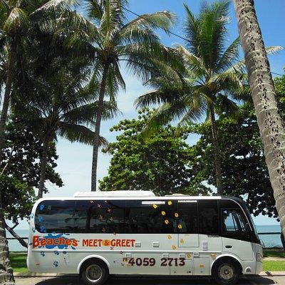 Beaches Meet and Greet Bus
