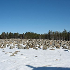 17 Acres of stones, each representing a soldier who died in the Suomussalmi and Raatte Road batt