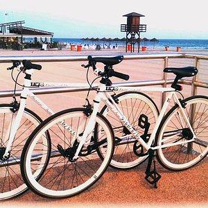 La mejor forma de conocer la ciudad de Cádiz, sus playas, sus monumentos, sus rincones, su cultu