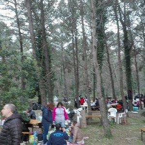 Casale Dei Pini