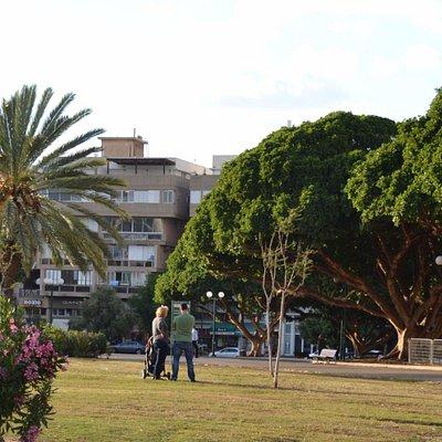 Kikar Hamedina Tel Aviv