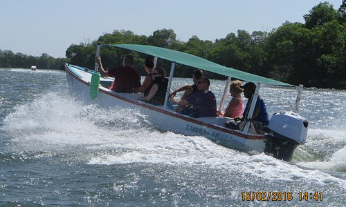 Going to Mangroves