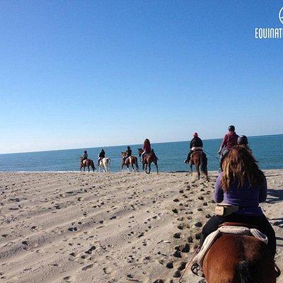 Escursioni a cavallo sulla spiaggia - Versilia