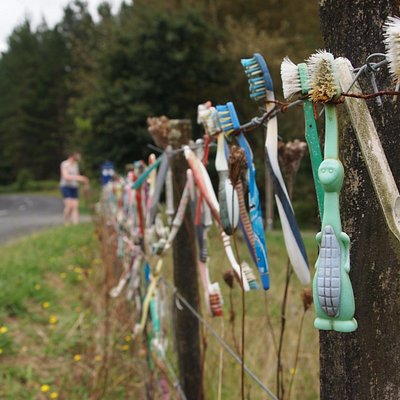 Ah the Toothbrush fence.
