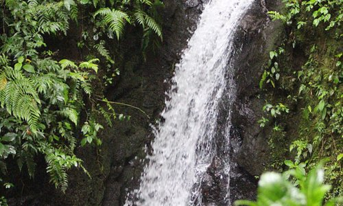 The lower part of the waterfall