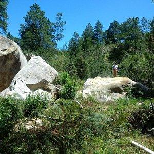 Piedra Letrada cerca de Constanza