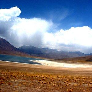 Las Lagunas son impactantes!!! En medio el desierto, restos e antiguos mares.