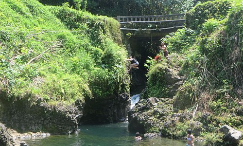 A woman jumping into Ching's Pond