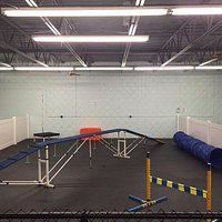 This is the agility area for those that want some REAL dog training, hehe.