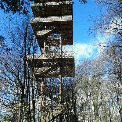 Wieża Widokowa Wieżyca im. Jana Pawła II