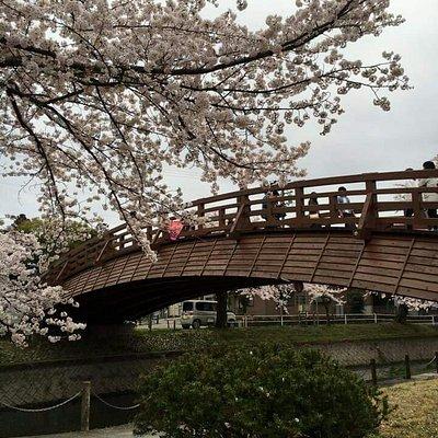 堀尾跡公園