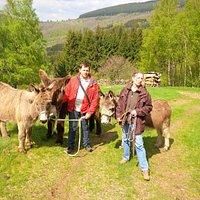 Ballade avec nos ânes