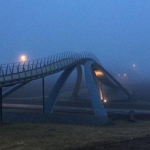Da Vinci-broen