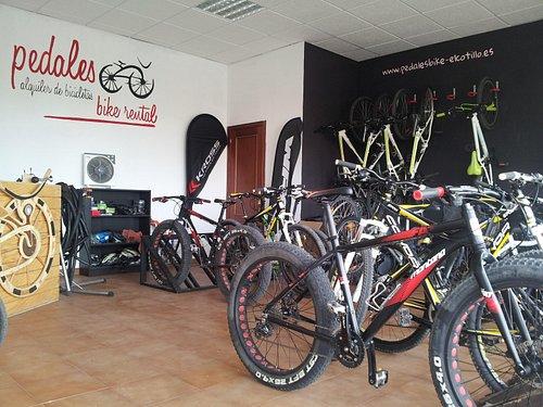pedales bike rental and tours  el cotillo