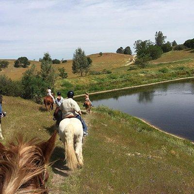 Private Creston Ranch ride. Call us to book a ride. 805-610-1306