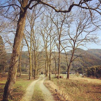 新しき村の入口からの風景