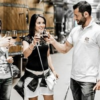 Agriloro_Wine_Tasting_Cellar