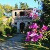 Staff Villa Reale