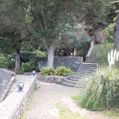 Parque Los Lavaderos has a lot of steps