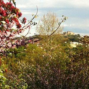 Vista sul castello di Gorizia
