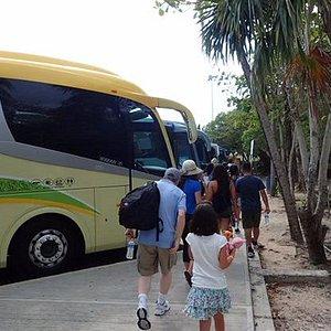 Tulum Express: bus parking area