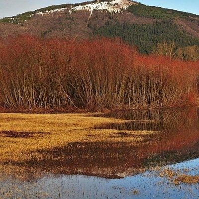 Mount Slivnica in autumn