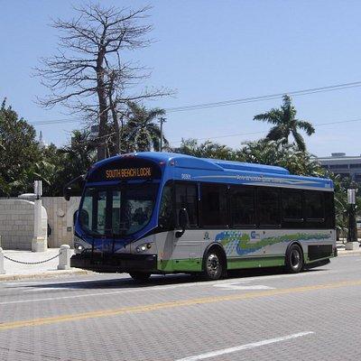 ônibus que só circula por Miami Beach