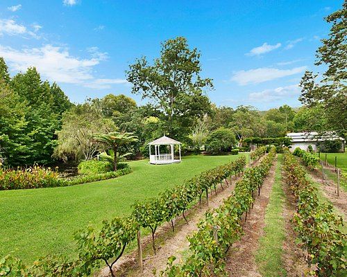 Wander through the beautiful gardens and vines
