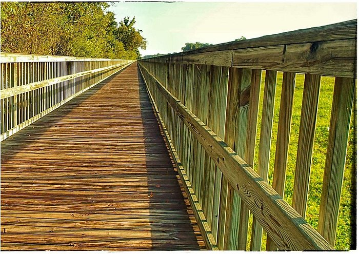 Board walk trail going north toward Doctor's Inlet