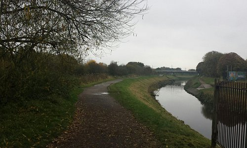 River Mersey and paths along the woods