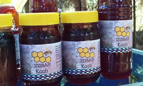 Ven a disfrutar de la miel natural