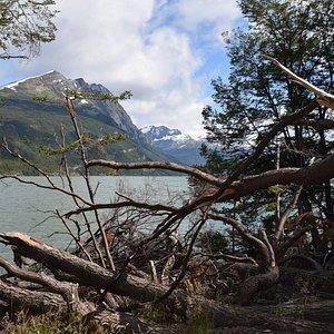Hito XXIV en el Parque Nacional Tierra del Fuego sendero bien señalizado de 1,30 hs aprox.