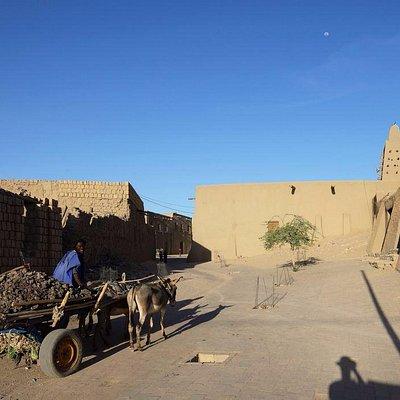 Photo of a local outside the Djinguereber mosque