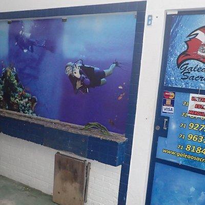 Galeão Sacramento- escola e operadora de mergulho