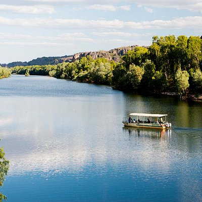 The pristine east alligator river