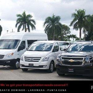 Prestige Limousine type of fleet